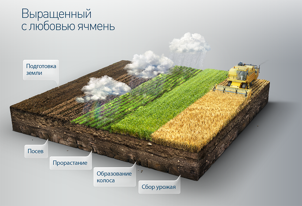 3d-vladimir-andreev (2)